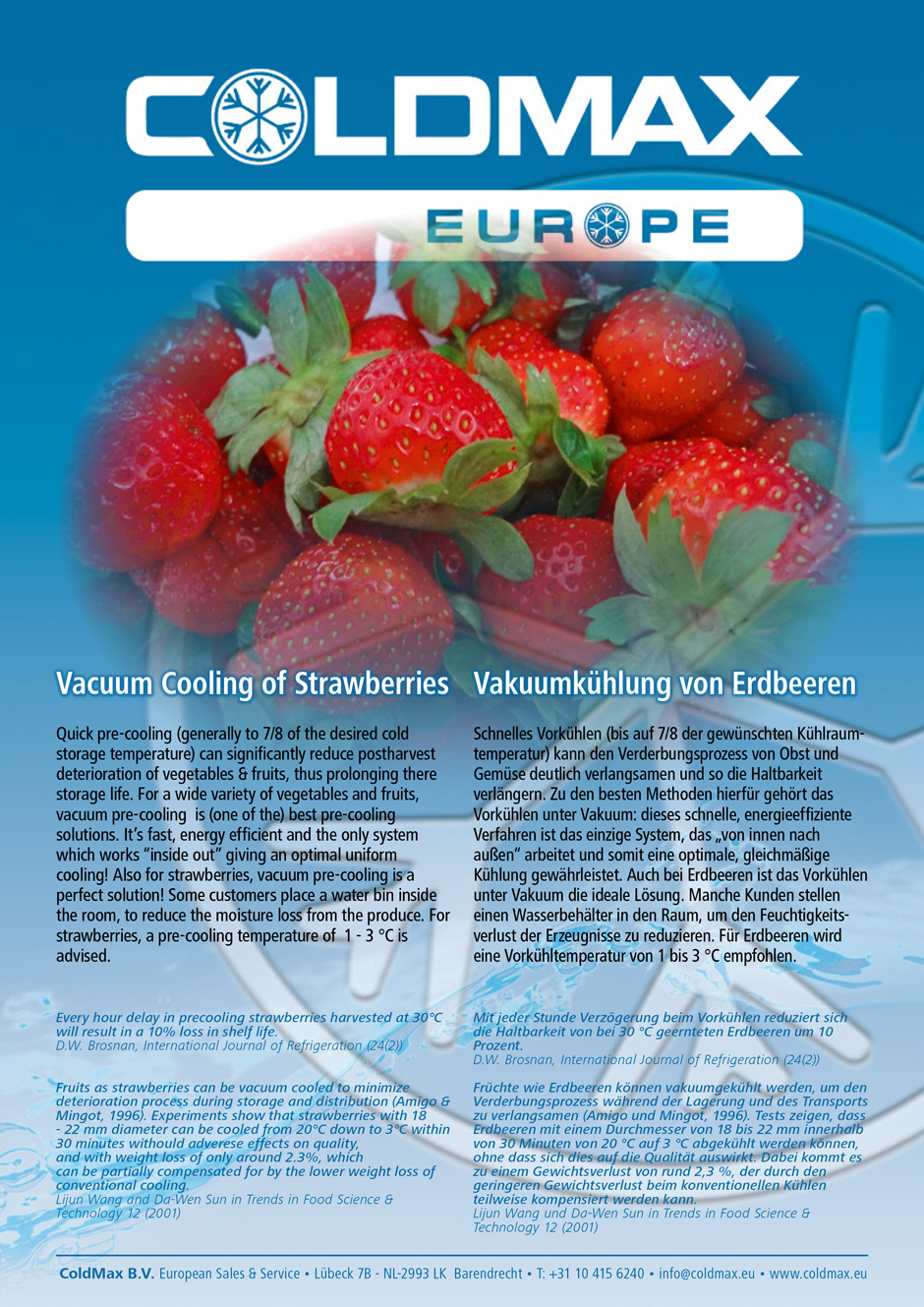 vacuum-cooling-strawberry