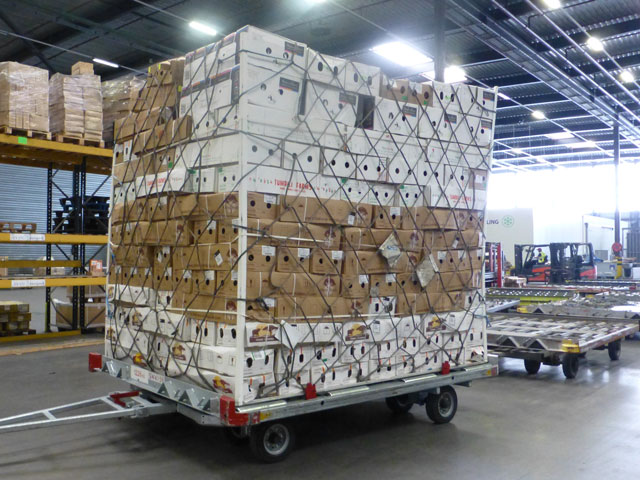 vacuum cooling flowers transport aircraft pallet